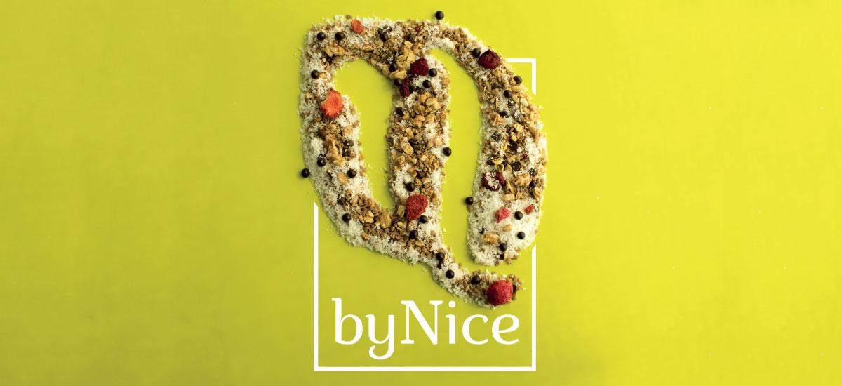 bynice-slide-sett2016